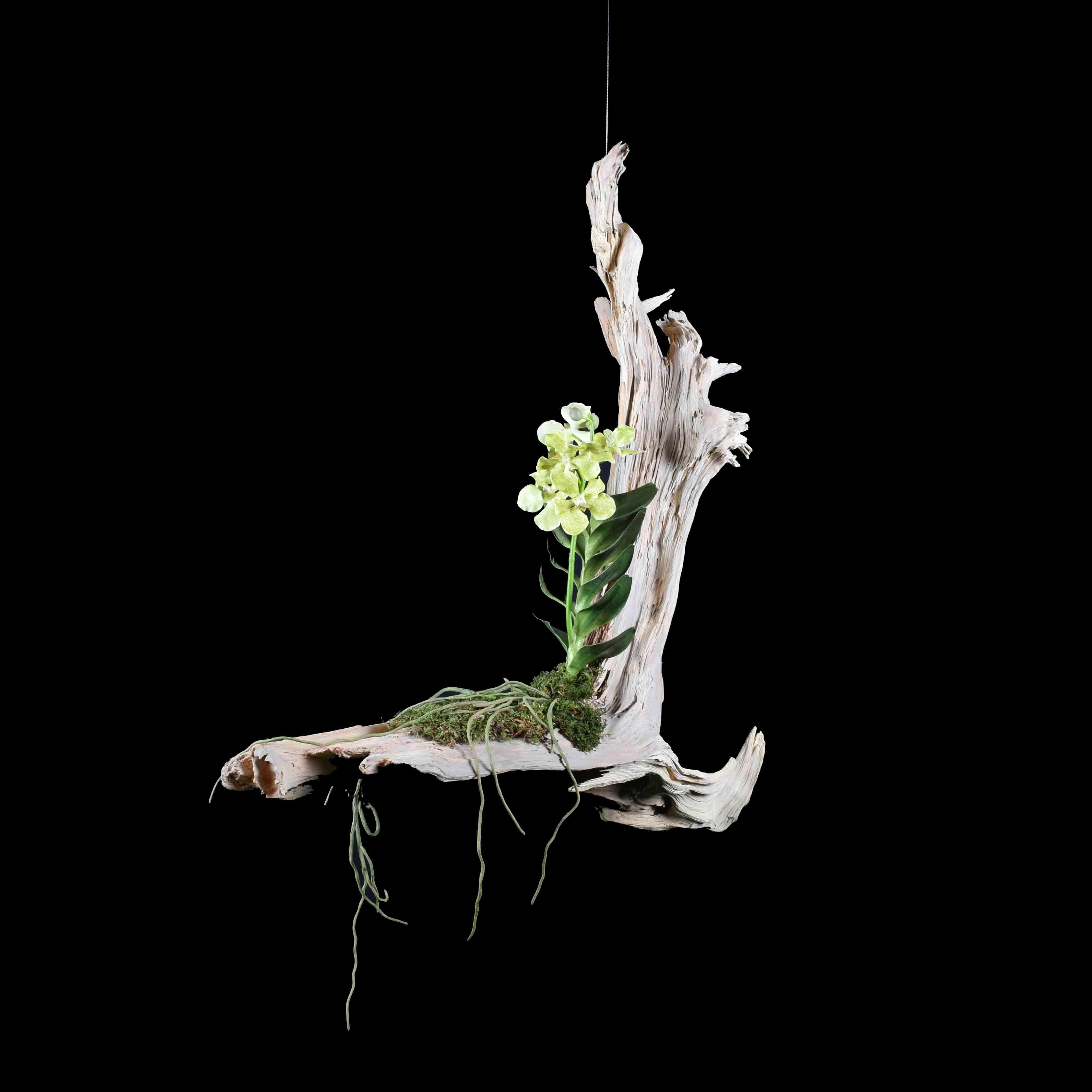 suspente d'orchidée